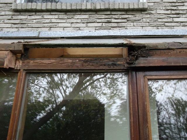 Rotted wood on sunroom roof