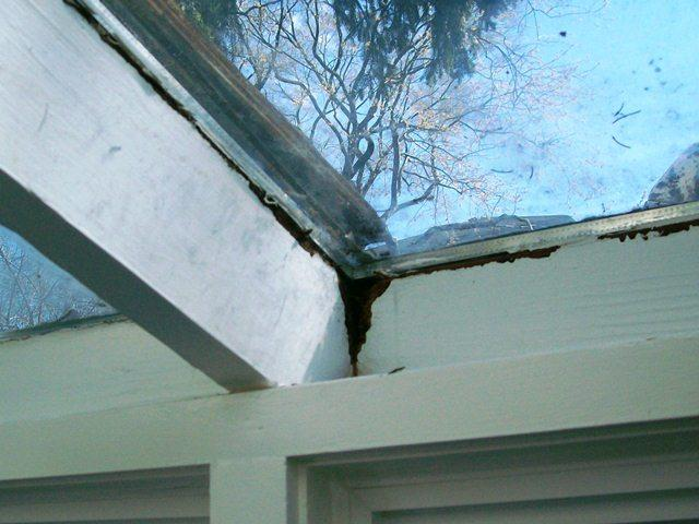 Rotted wood on glass roof